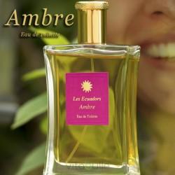 Ambre - Parfum - Les Ecuadors
