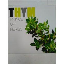 Cadre Herbs 4 - Dotspot