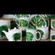 "Porcelain box ""Rainforest"" - Ard'time"