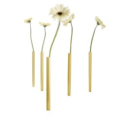 Magnetic golden vases set of 5 pcs - Peleg Design